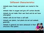 different characteristics