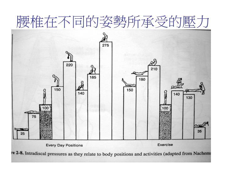 腰椎在不同的姿勢所承受的壓力