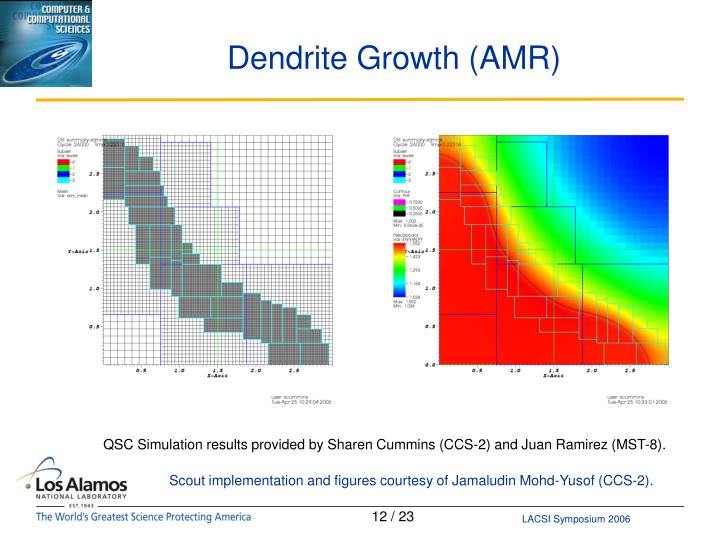 Dendrite Growth (AMR)