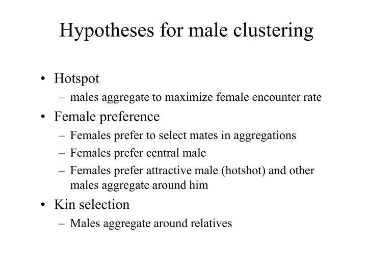 Hypotheses for male clustering