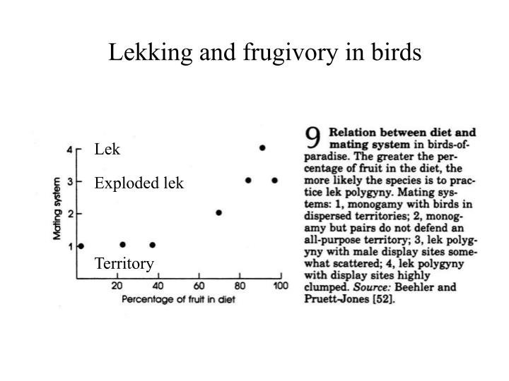 Lekking and frugivory in birds