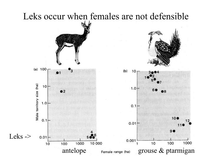 Leks occur when females are not defensible