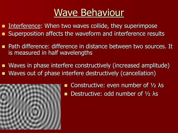 Wave Behaviour