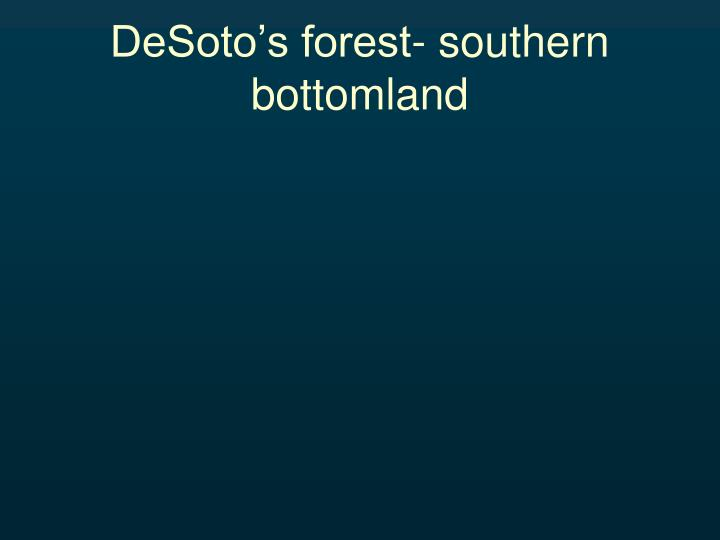 DeSoto's forest- southern bottomland