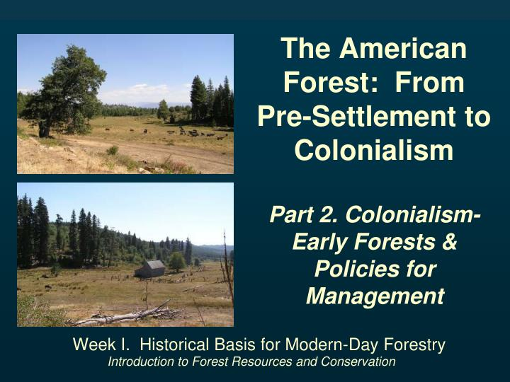 The American Forest:  From Pre-Settlement to Colonialism