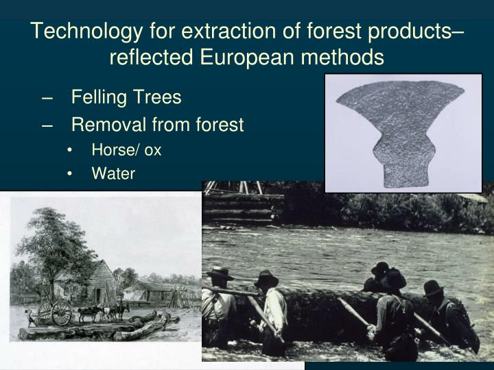 Technology for extraction of forest products– reflected European methods
