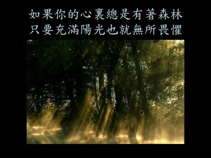 如果你的心裏總是有著森林