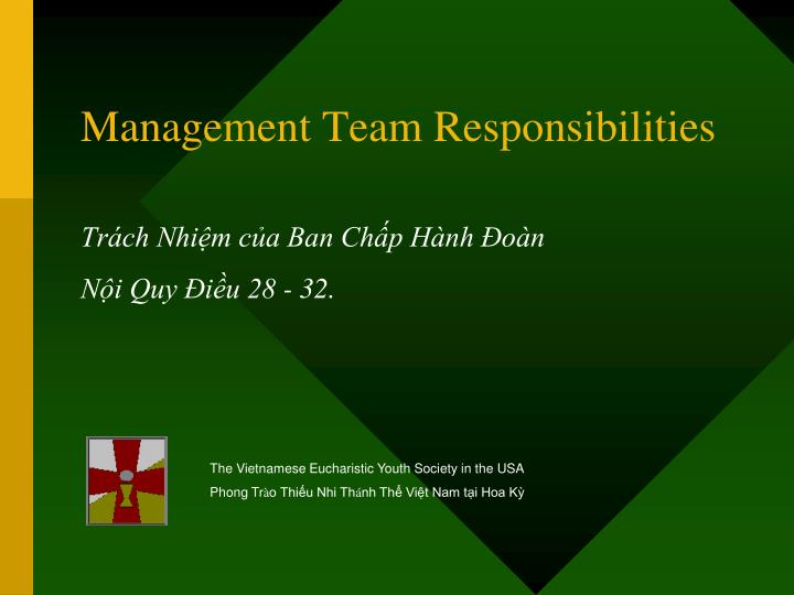 Management team responsibilities
