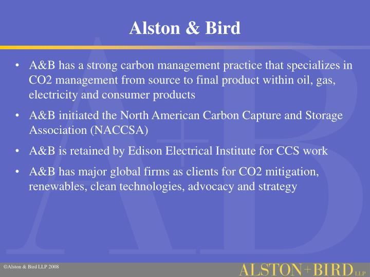 Alston bird