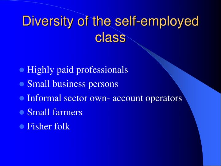 Diversity of the self employed class