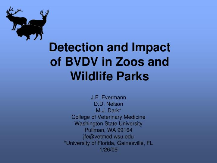 Detection and impact of bvdv in zoos and wildlife parks