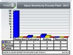 injury severity by process plant 2012