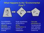 what happens to the environmental flow