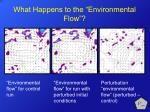 what happens to the environmental flow5