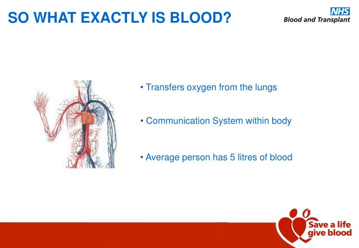 SO WHAT EXACTLY IS BLOOD?