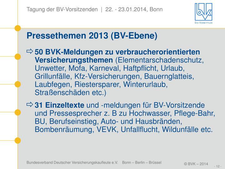 Pressethemen 2013 (BV-Ebene)