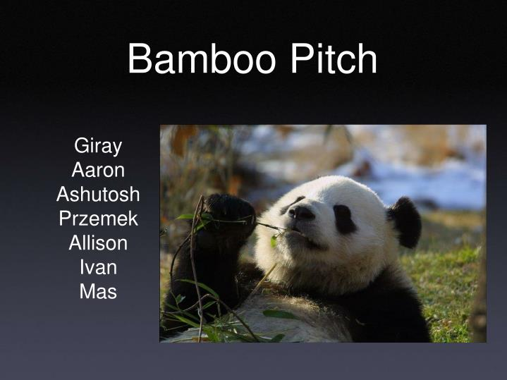 bamboo pitch n.
