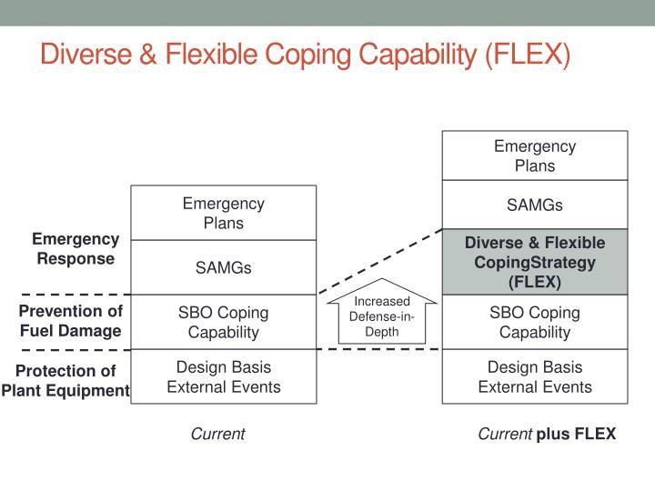 Diverse & Flexible Coping Capability (FLEX)