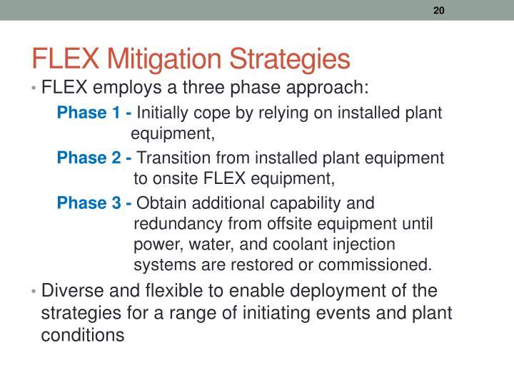 FLEX Mitigation Strategies