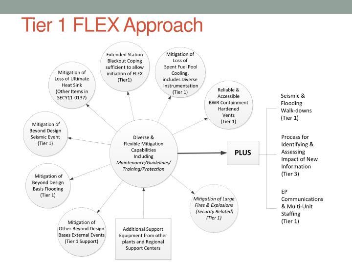 Tier 1 FLEX Approach
