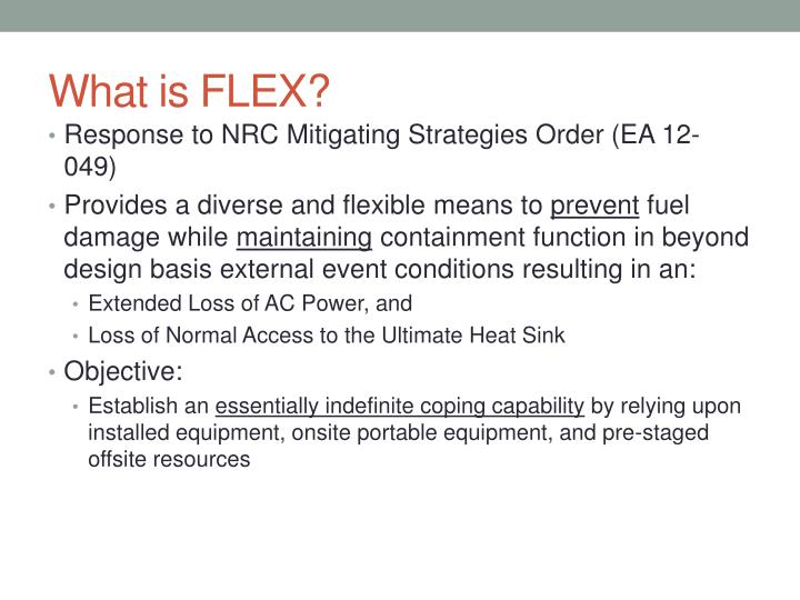 What is FLEX?
