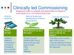 clinically led commissioning