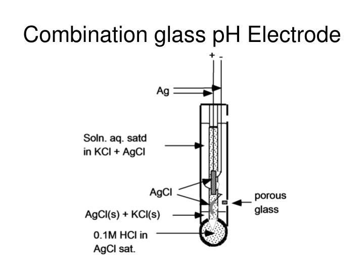 Combination glass pH Electrode
