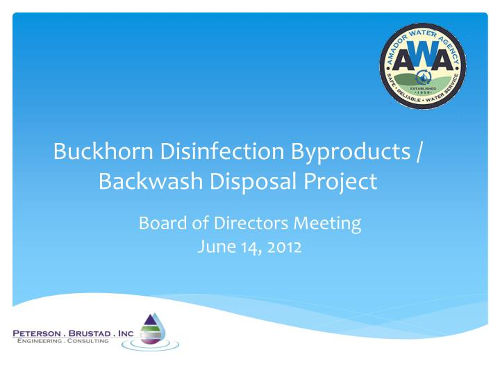 Buckhorn disinfection byproducts backwash disposal project