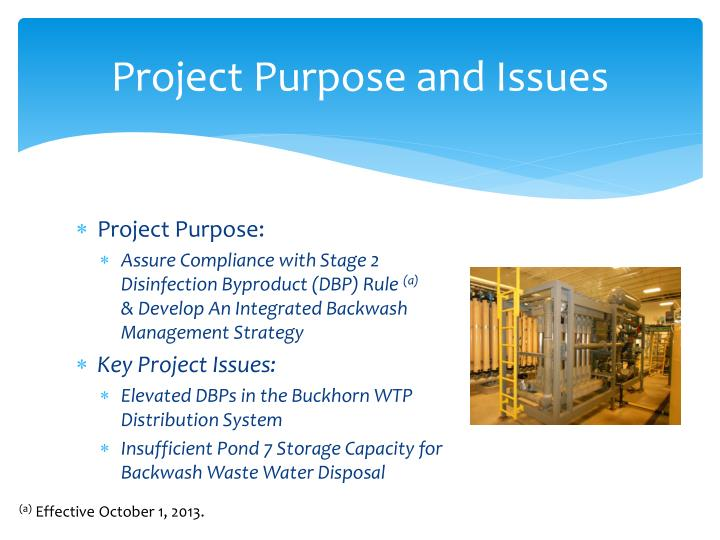 Project purpose and issues