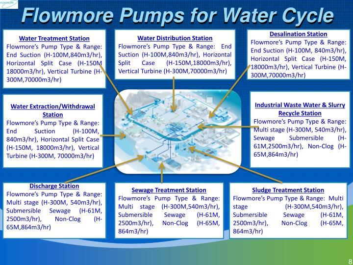 Flowmore Pumps for