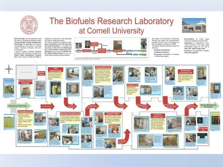 Brl biofuels research lab protocols