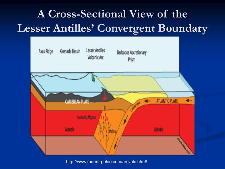 A Cross-Sectional View of the