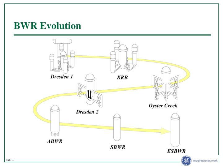 BWR Evolution
