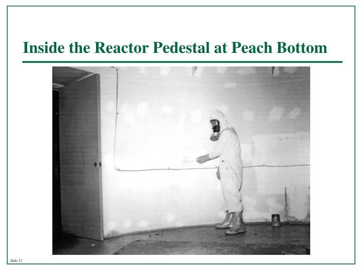 Inside the Reactor Pedestal at Peach Bottom