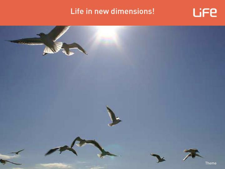 Training for LiFe-Seminars: