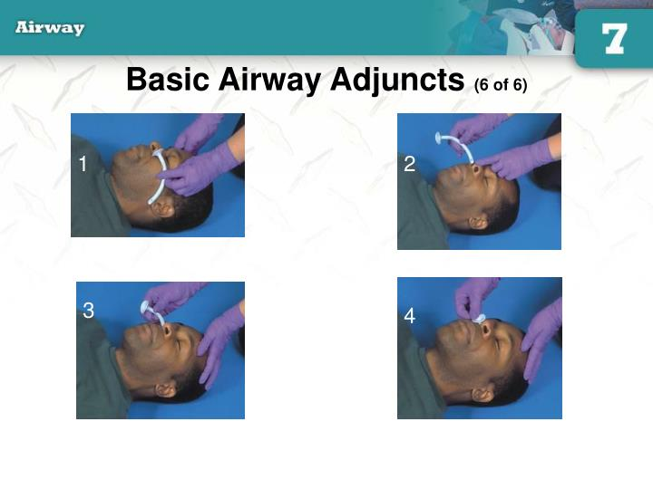 Basic Airway Adjuncts