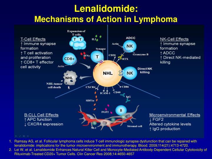 Lenalidomide: