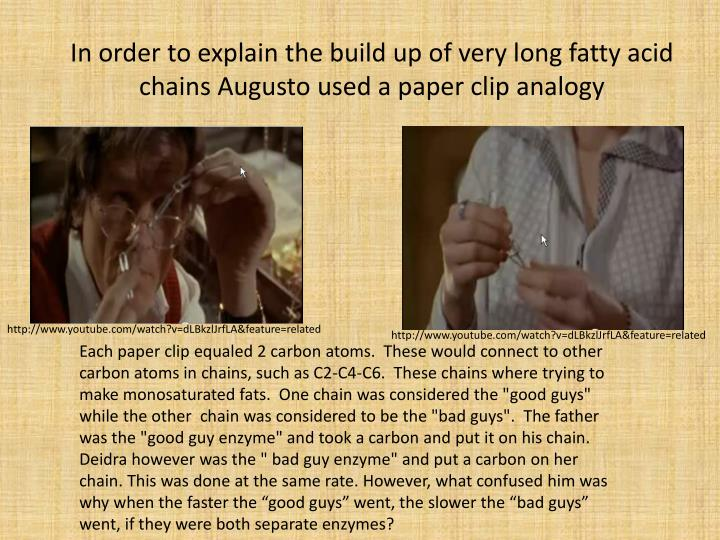 In order to explain the build up of very long fatty acid chains Augusto used a paper clip analogy