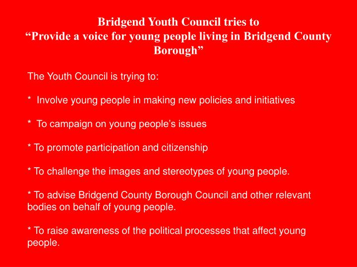 Bridgend youth council tries to provide a voice for young people living in bridgend county borough