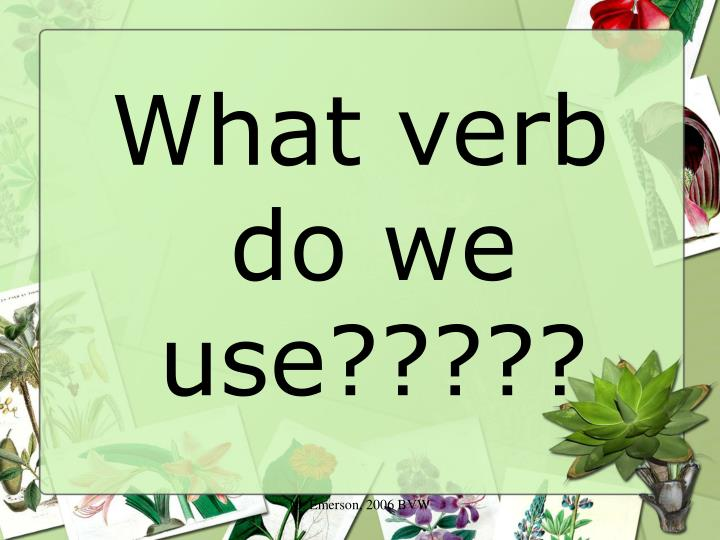 What verb do we use?????