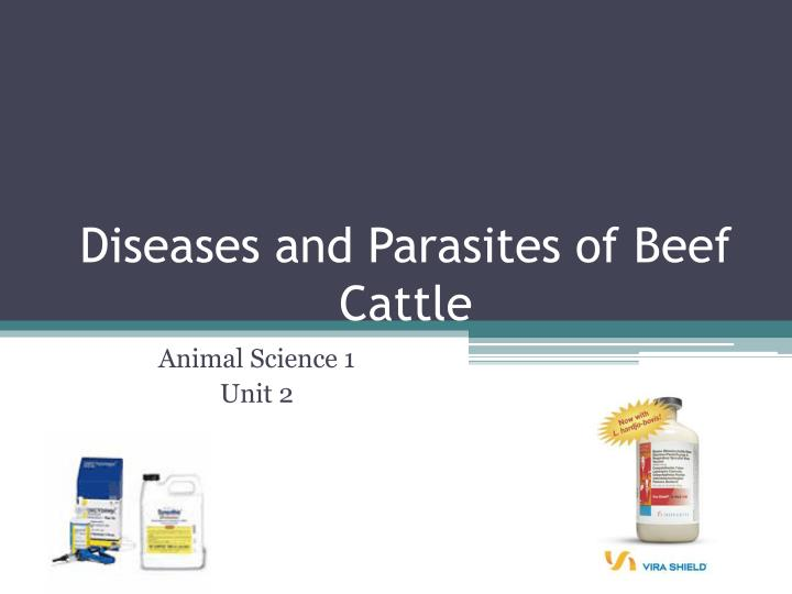 diseases and parasites of beef cattle n.