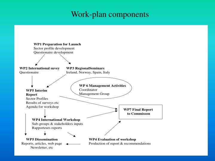Work-plan components
