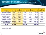 country overview attributable profit