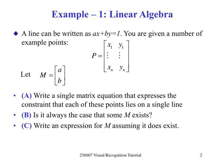 Example 1 linear algebra