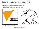 primitives in an adaptive grid