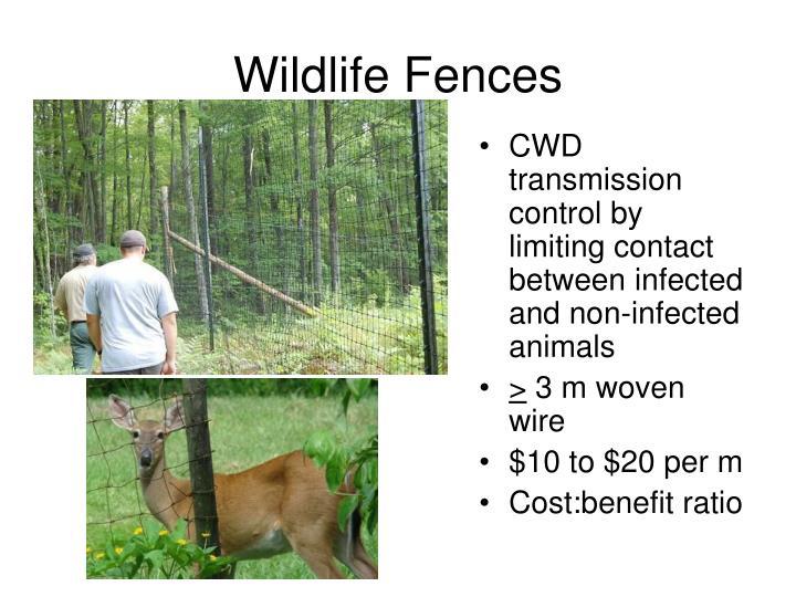 Wildlife Fences