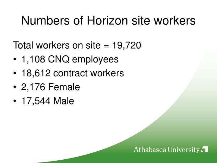 Numbers of Horizon site workers