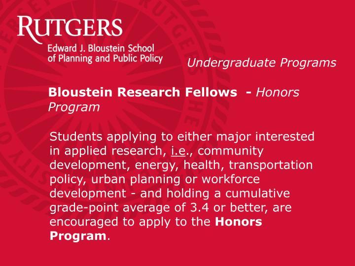 Bloustein Research Fellows  -
