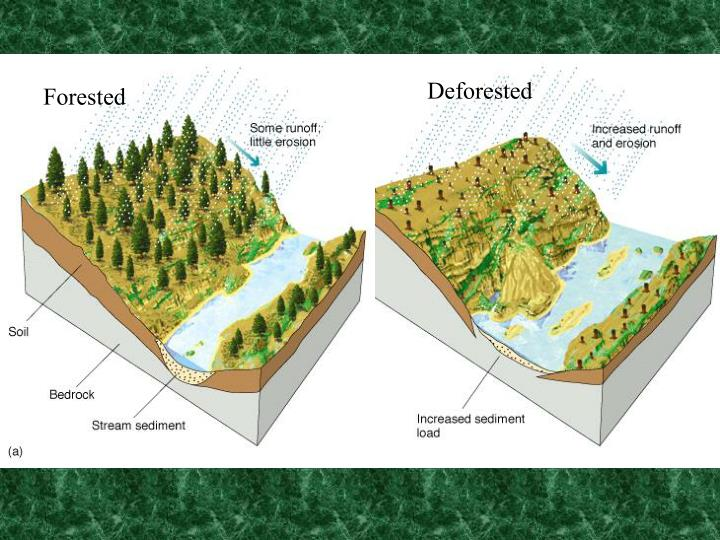 Deforested