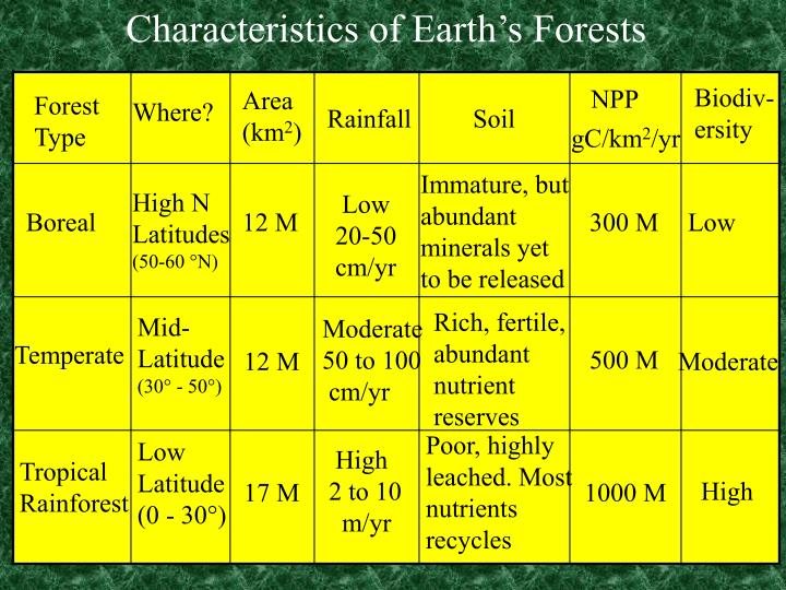 Characteristics of Earth's Forests